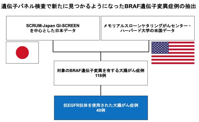 遺伝子パネル検査で新たに見つかるようになったBRAF遺伝子変異症例の抽出の画像