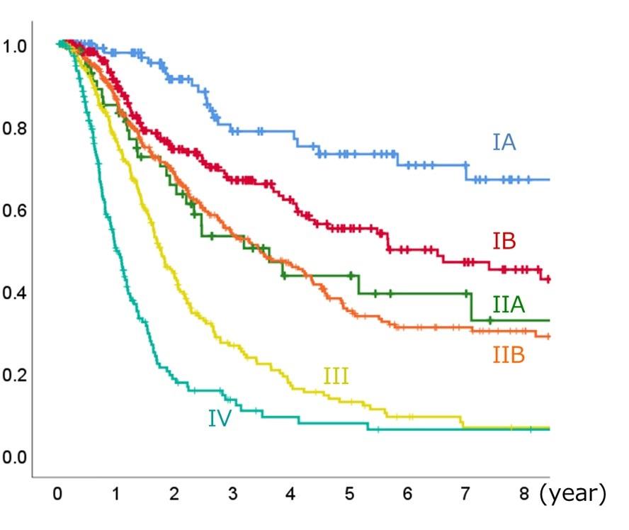 ステージ 4 癌 膵臓